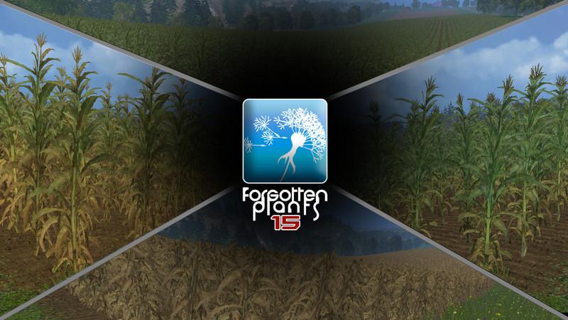 forgotten-plants-maize--2
