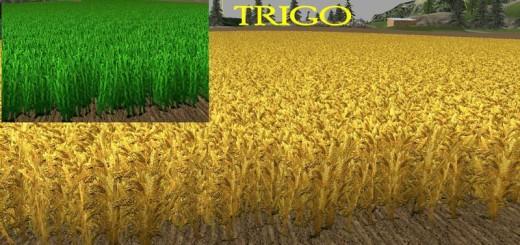 nova-texture-wheat-barley-v1-0-mais_4