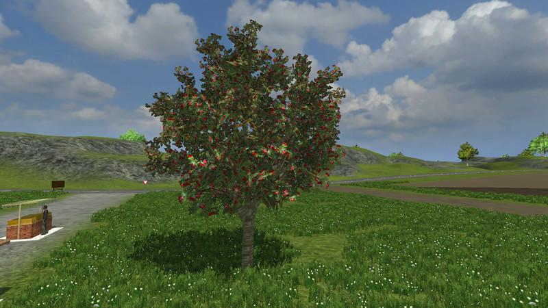 ros-fruit-and-berries-v2-1_1