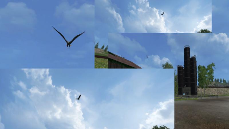 Eagle-Flying-for-FS-2015