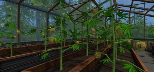 weed-house-v1-0_1