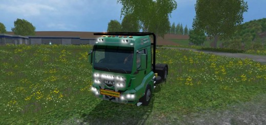 1435255838_man-holztransport-1
