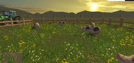 Animated-Pigs-FS-15-V-1.0