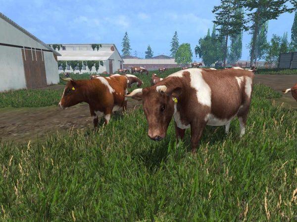 1469917202_models-cows-v3-0_1