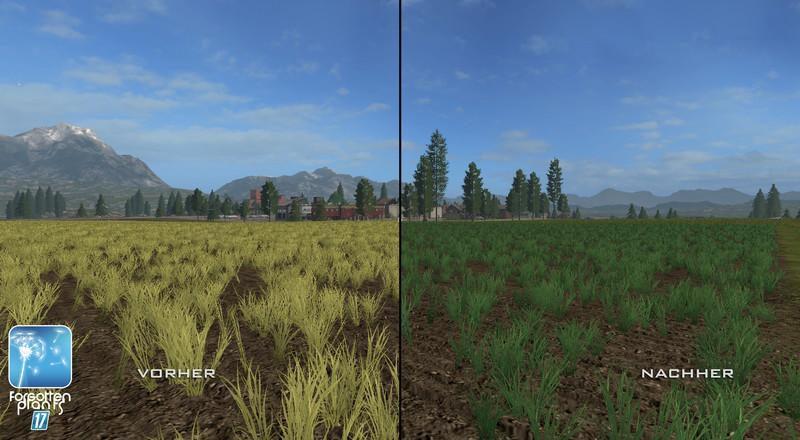 4749-forgotten-plants-wheat-barley-v1-0_2
