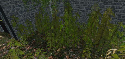 nettles-foliage-texture-v1-0_4