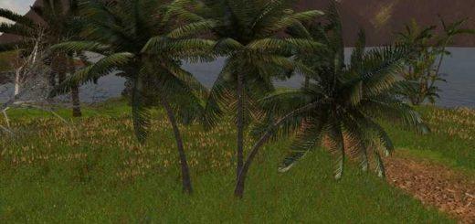 object-coconut-trees-v1-0_1