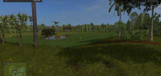 rio-branco-farm-beta_3