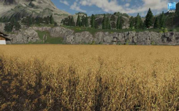 forgotten-plants-oat-v1-0-0_4