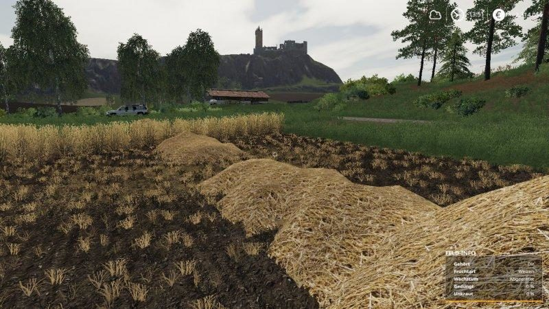 ls19-real-straw-texture-1-0_4