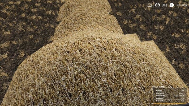 ls19-real-straw-texture-1-0_5