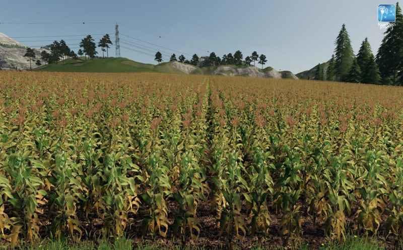 forgotten-plants-maize-v1-0-0_4