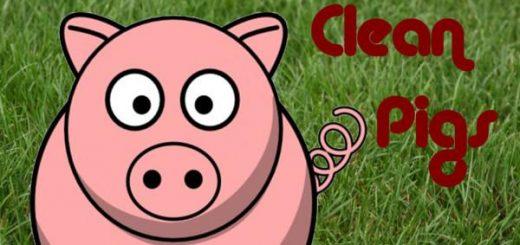 schweinestalle-cleanmax-v1-0_1
