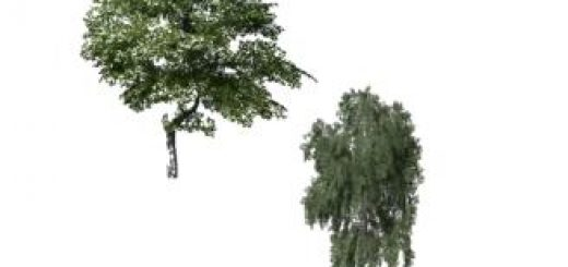 two-placeable-trees-v1-0_1
