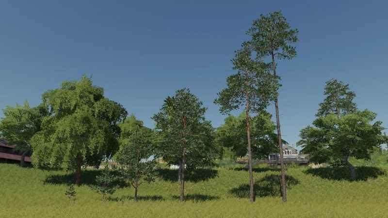 more-tree-v1-0-0-0_3
