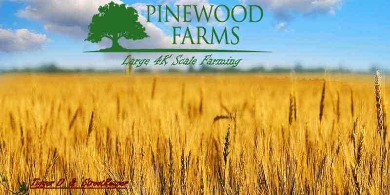 pinewood-farms-1-0-2_26