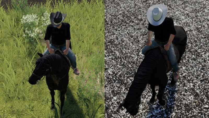 cowboy-hat-v1-0-0-1_1