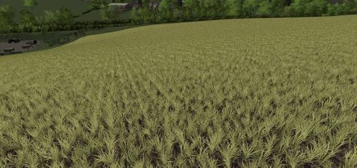 realistic-cereal-and-canola-crop-densities-v1-0_2