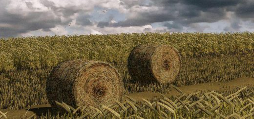 wheat-barley-windrow-bales-animations-v1-0_1
