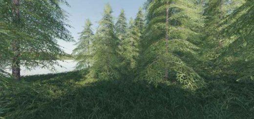 willamina-forest-v1-2-0-0_5