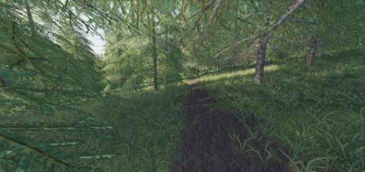 willamina-forest-v1-2-0-1_4