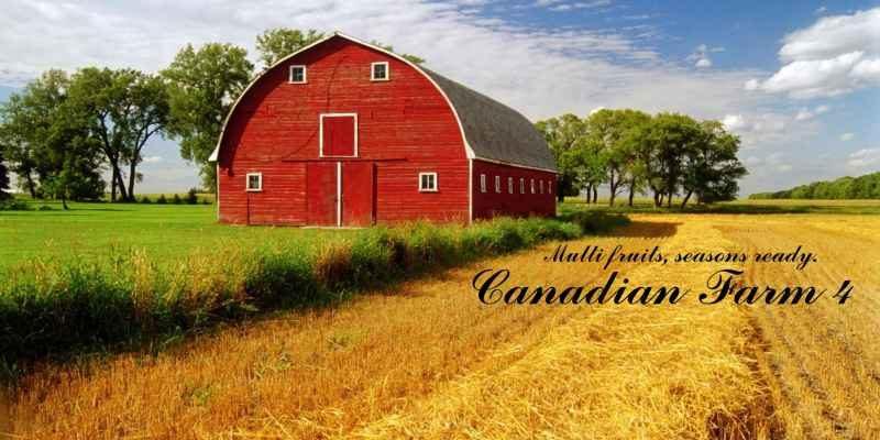canadian-farm-4_1